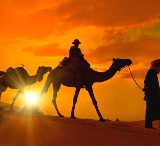 Viaggio organizzato in Marocco alla scoperta delle città Imperiali ed il deserto del Sahara