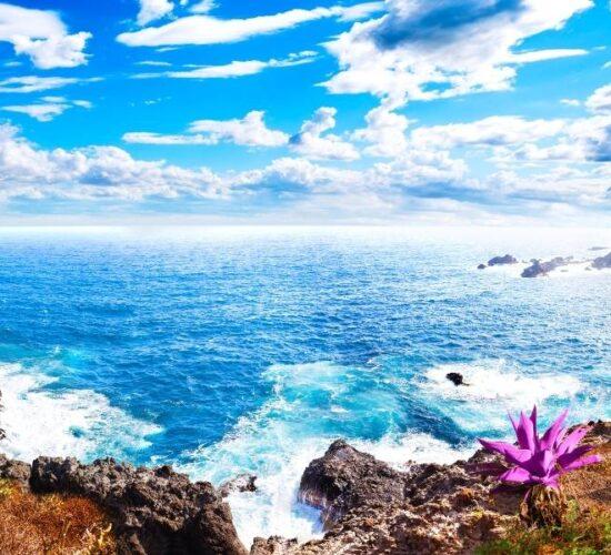 Viaggio organizzato a Tenerife l'isola dell'eterna primavera